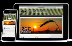 portfolio_mobile_pgc